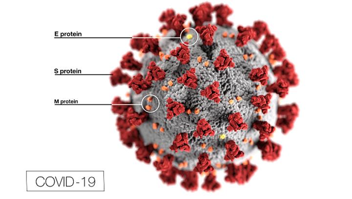 Přehled služeb centra v souvislosti s koronavirem 🇨🇿 🇷🇺 🇲🇳 🇻🇳